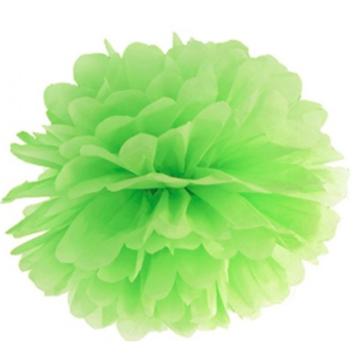 Obrázek Pom pom světle zelený 10 cm