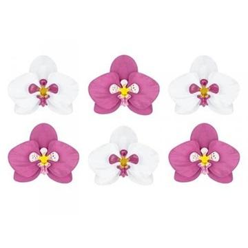 Obrázek Květy orchideje 6 ks