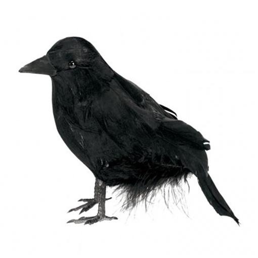Obrázek z Halloweenská dekorace Havran 10 cm